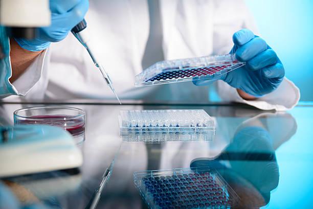 In het nieuws: pre-zwangerschap gen-test nu ook mogelijk bij huisartsen